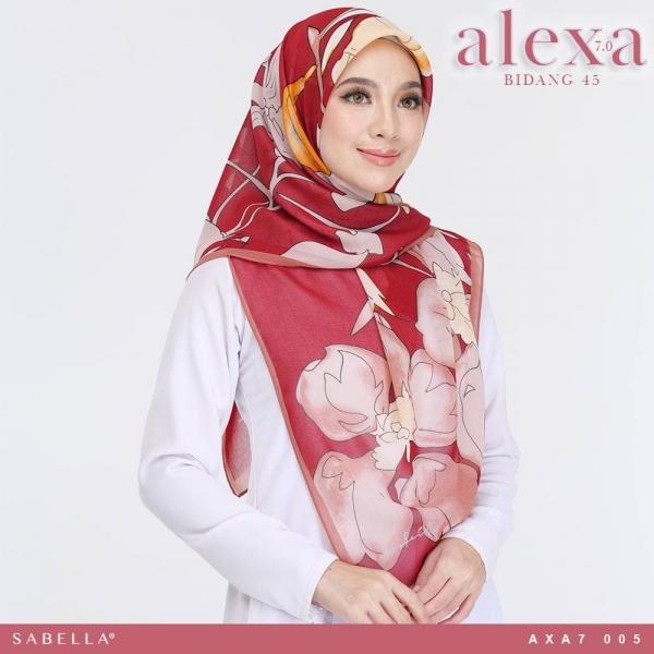 Alexa Hot (45) 005_7